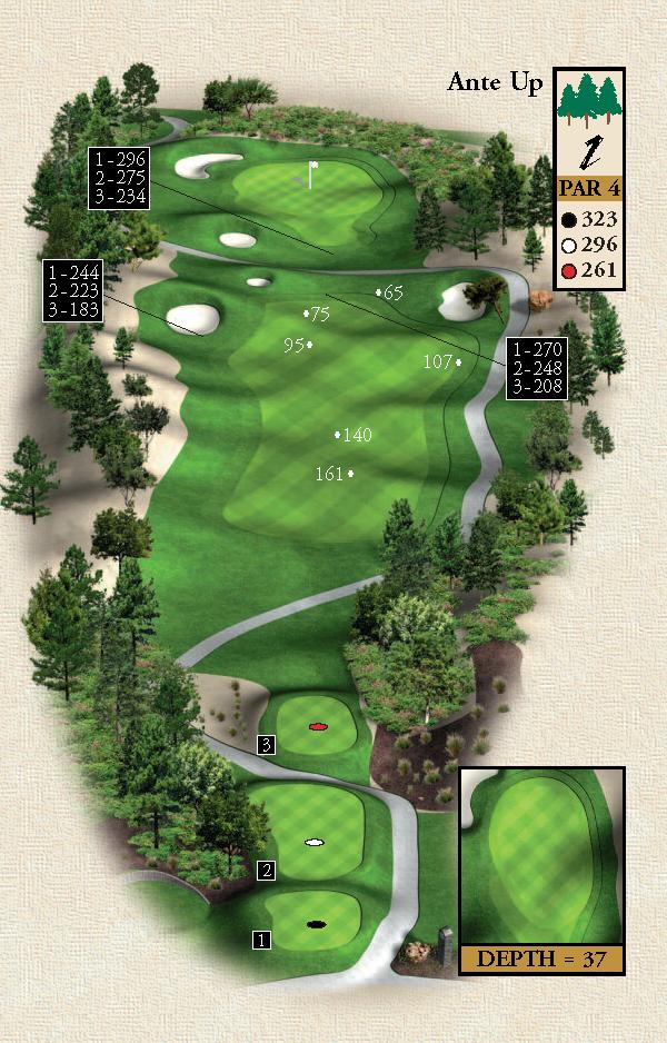 Dye Design Golf Course Desert Pines